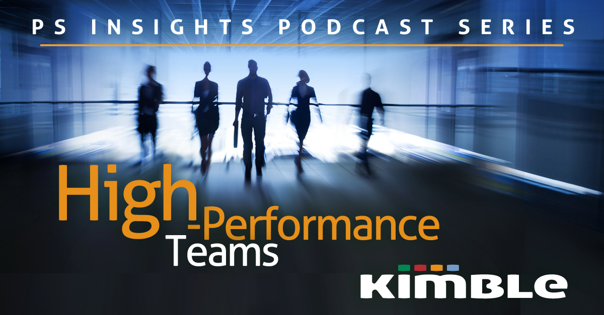 High performance teams in consulting businesses